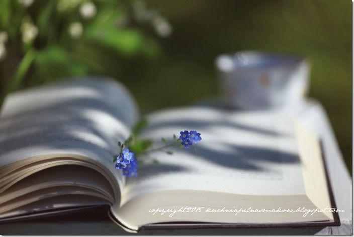 książka w ogrodzie (5)