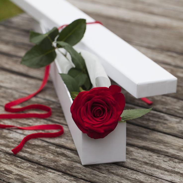 A beautiful red rose in a box
