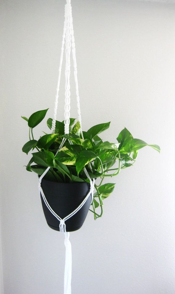 Give a plant a happy home :) Long white plant hanger from Modern Twist on Etsy!