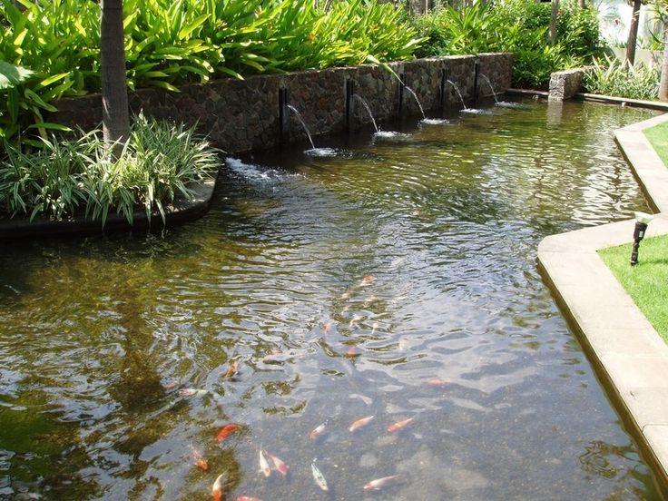 Modern Fish Pond Design Fish Pool Design Fish Pond
