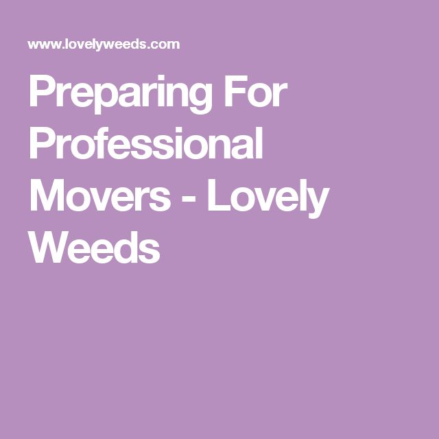 Preparing For Professional Movers - Lovely Weeds