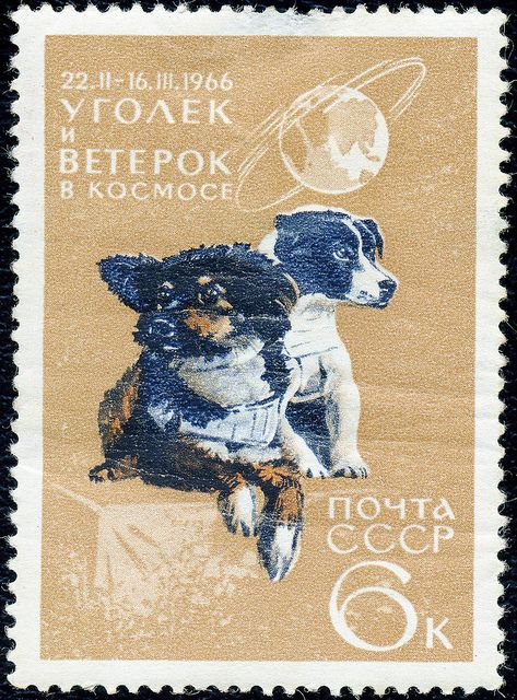 Art - Stamp Art - Animal - Russia - Space dog -Уголек_и_Ветерок by Vintageprintable1, via Flickr
