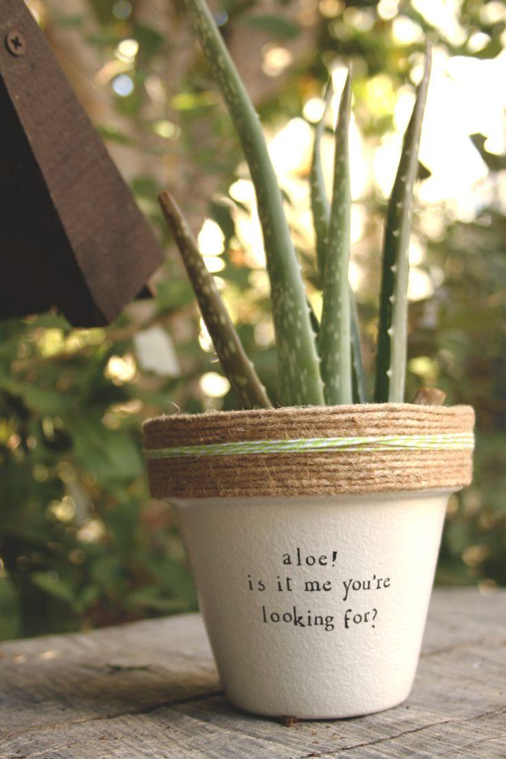 "Lionel Richie ""Aloe!"" by PlantPuns on Etsy"