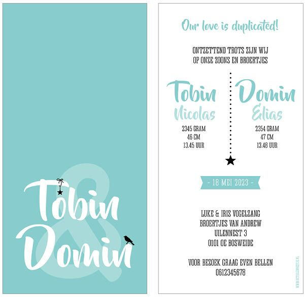 www.hetuilennestje.nl geboortekaartje Tobin en Domin: Typografisch, blauw, wit, zwart, ster, sterren, sterretje, vogel, &-teken, jongen, jongens, tweeling, drieling, meerling. Het Uilennestje - Geboortekaartjes - Zwolle