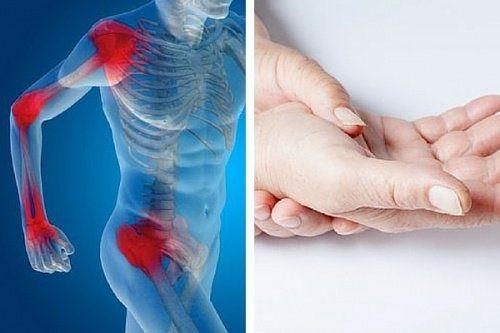 Prévenir l'usure des cartilages par l'alimentation