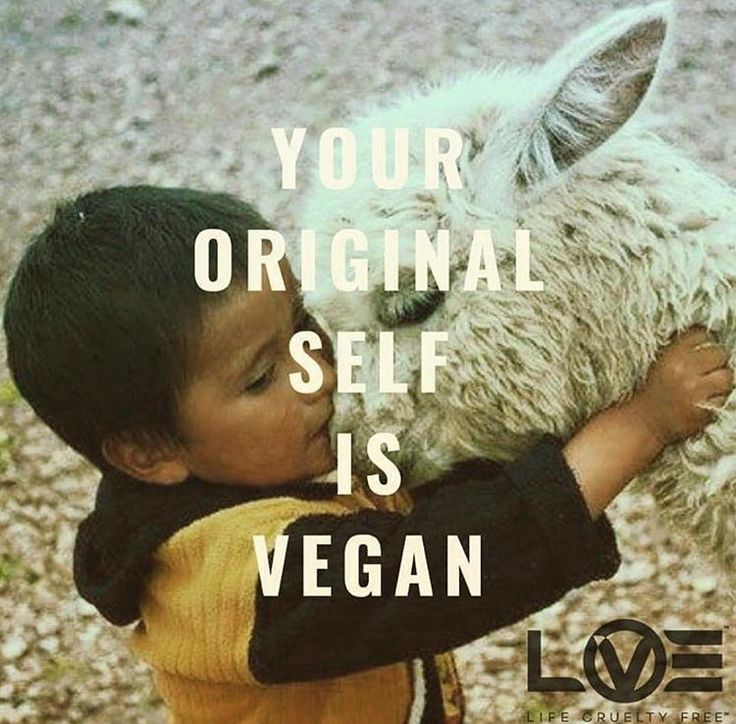 Click the Pin to Take the Indigo Children TestFind out if you are a Indigo Child or Adult #vegan I always found it interesting that little children have to be coerced into eating their meat. They don't want it.