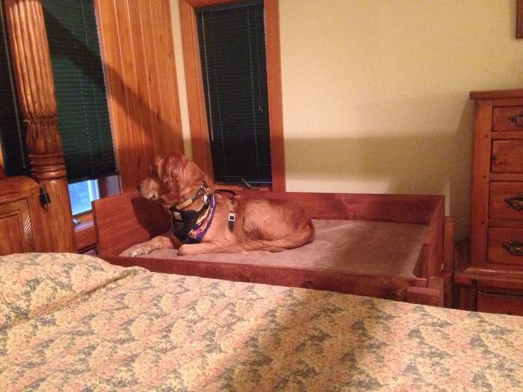 Ana White Build A Dog Bed Free And Easy Diy Project