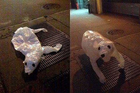 Joshua Allen Harris' inflatable polar bear has been dropping jaws across the interweb recently. The artist ties the bear, made out of old plastic bags, onto ventilation grates that lead into NYC subway tunnels. At this point, the bear doesn't look like much, but when a subway goes past, the warm air that rushes out of the vents inflates the plastic animal, making it come to life. This is so simple, yet stunningly conceived and exectuted.