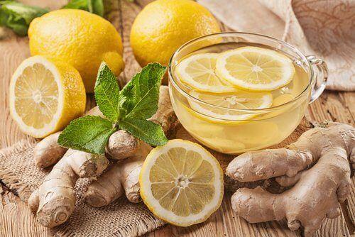 Ingwer und Zitrone gegen Bauchfett
