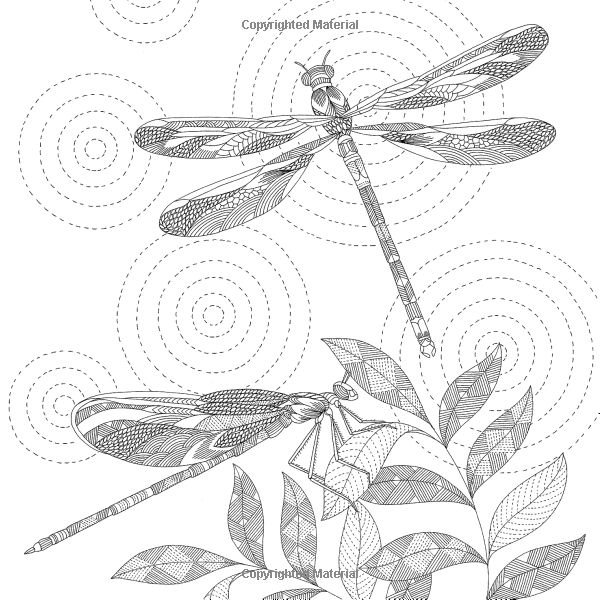 Animal Kingdom: Color Me, Draw Me (A Millie Marotta Adult Coloring Book): Millie Marotta: 9781454709107: Amazon.com: Books