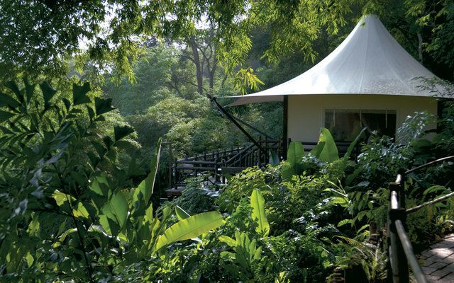 Four Seasons Tented Camp Golden Triangle, Chiang Rai, Tayland