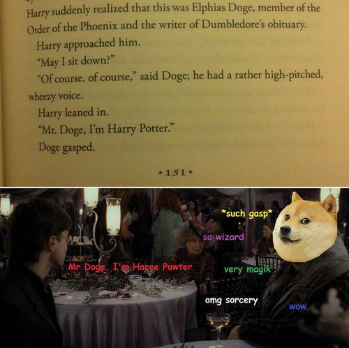 Mr. Doge in Harry Potter