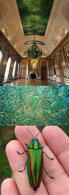 The Royal Palace in Belgium, where the ceiling is made of 1.6 million beetle wings