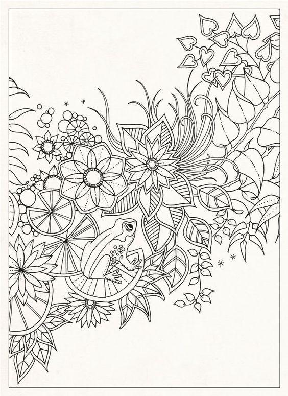 Secret Garden 20 Postcards Johanna Basford 9781856699464 Amazon Books