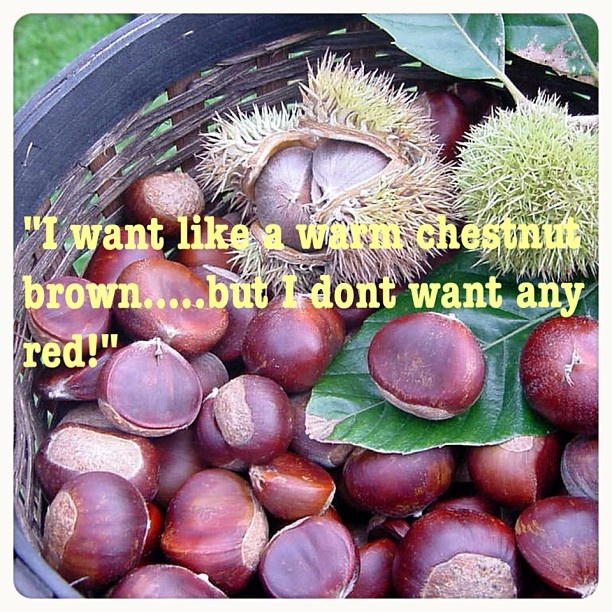 """I want like a warm chestnut brown…but I don't want any red!"" 