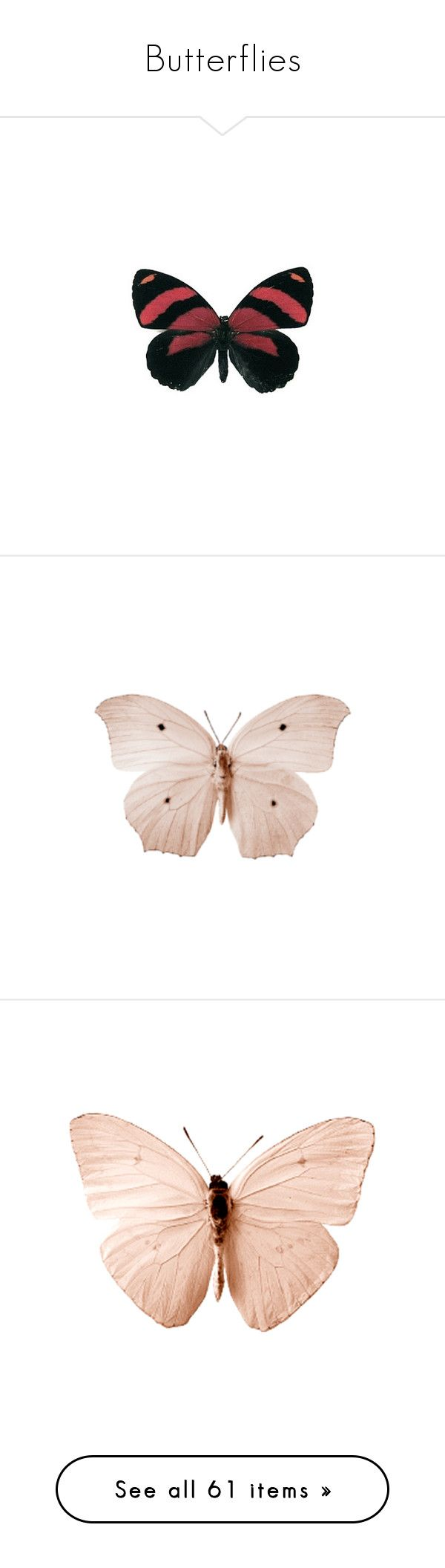 """""""Butterflies"""" by lorika-borika on Polyvore featuring butterflies, backgrounds, animals, fillers, red, mariposas y alas, filler, other, pink и detail"""