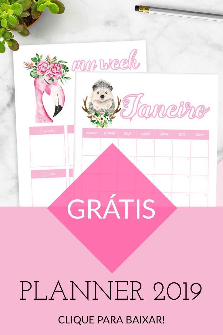 Planner 2019 Baixe Gratis Planner Ideias De Calendario E