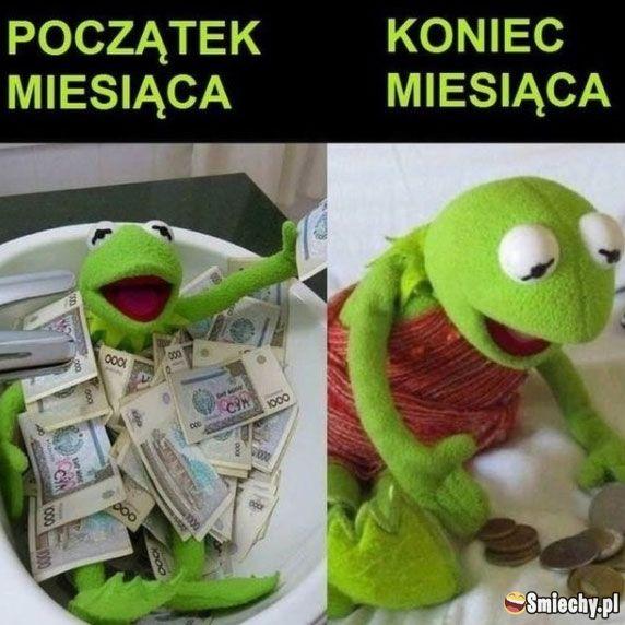 smiechy #smiechy.pl #śmieszne #memy #humor #funny #lol #fun #wypłata # pieniądze #miesiąc | Silly jokes, Funny pictures fails, Funny pictures for  kids