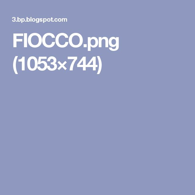 FIOCCO.png (1053×744)