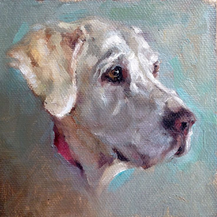 Beautiful Golden Lab painting in oil on canvas with bright accent colors by Heather Lenefsky Art #animalart #dog #dogart