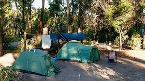 Camping at Green Patch, Booderee National Park