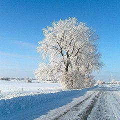 90 best images about Minot North Dakota on Pinterest ...