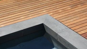Bluestone Pool Coping Design Ideas, Pictures, Remodel, and Decor