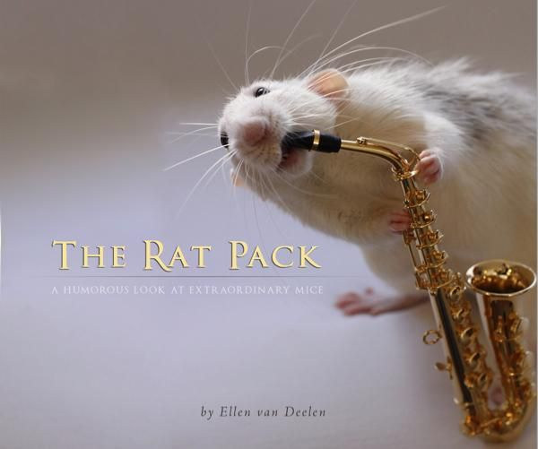 75 best rats love non fiction images on pinterest pet rats click to preview the rat pack photo book fandeluxe Choice Image