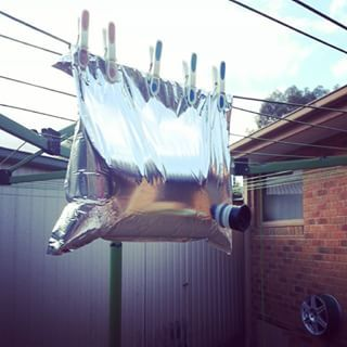 We invented cask wine. But here it's called goon and it's heaps of fun at parties. | 24 Batshit Insane Facts About Australia