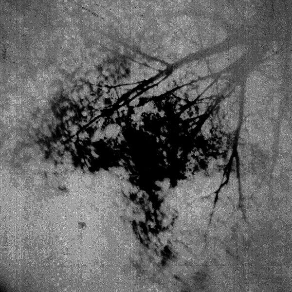Digital Pinhole Photograph 2005