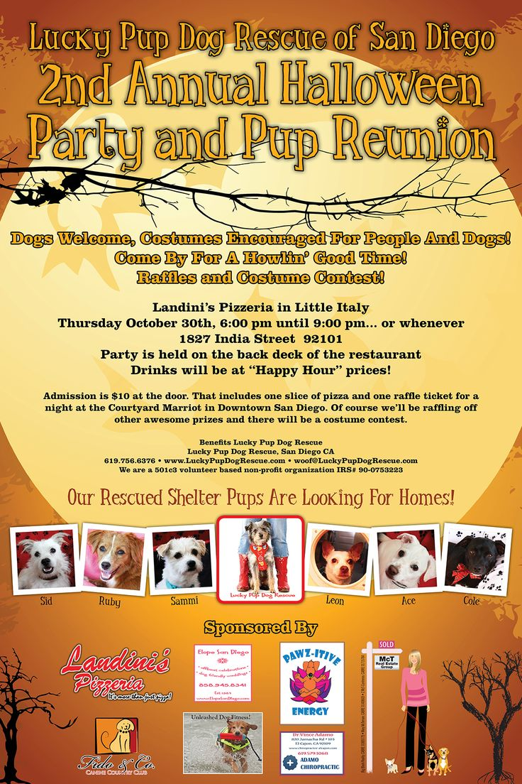 HALLOWEEN party, reunion and fundraiser.  THURSDAY Oct 30 at Landini's in Little Italy, San Diego  1827 India Street.  6pm  $10 donation includes slice of pizza and raffle ticket for nights stay at the Courtyard Marriott.  Hope to see you.  Kids free.  DOGS WELCOME.  COSTUME PARTY !!! http://www.examiner.com/article/have-a-howling-halloweenie-with-lucky-pup-dog-rescue