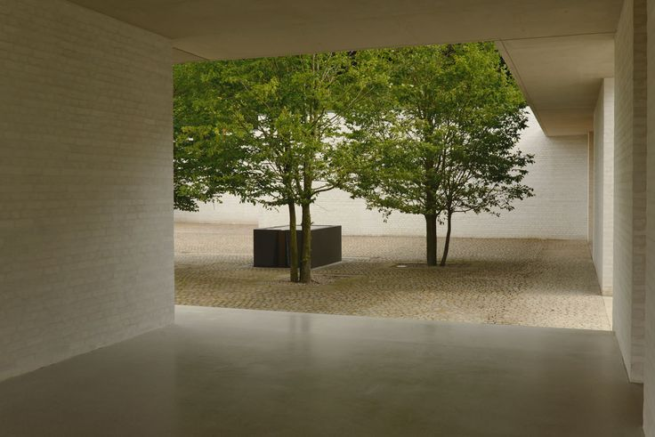 pale stone contemporary courtyard with specimen trees || David Chipperfield Architects – Fayland House