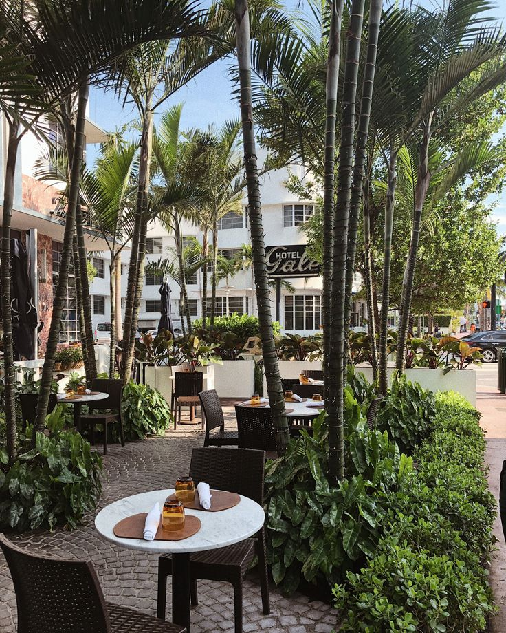Travel Guide Miami South beach hotels, Travel guide
