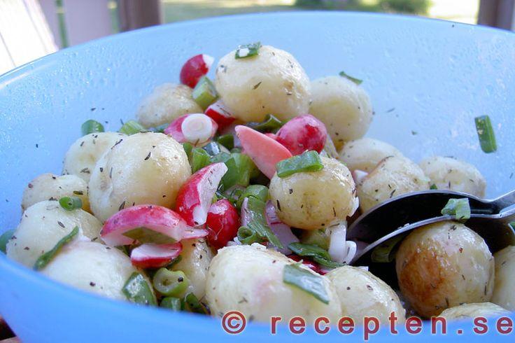 Recept på en mycket god och fräsch potatissallad gjord på färsk potatis med god dressing. Bilder steg för steg.