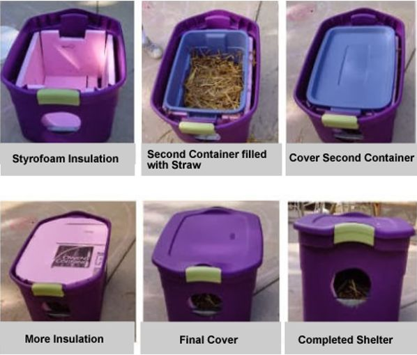 Alley Cat Advocates: building shelter for outside or feral cats for protection from cold.