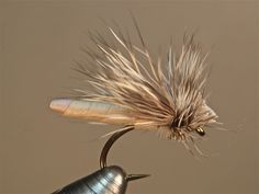 Pattern - Carnage Caddis (gallows variation) | Washington Fly Fishing