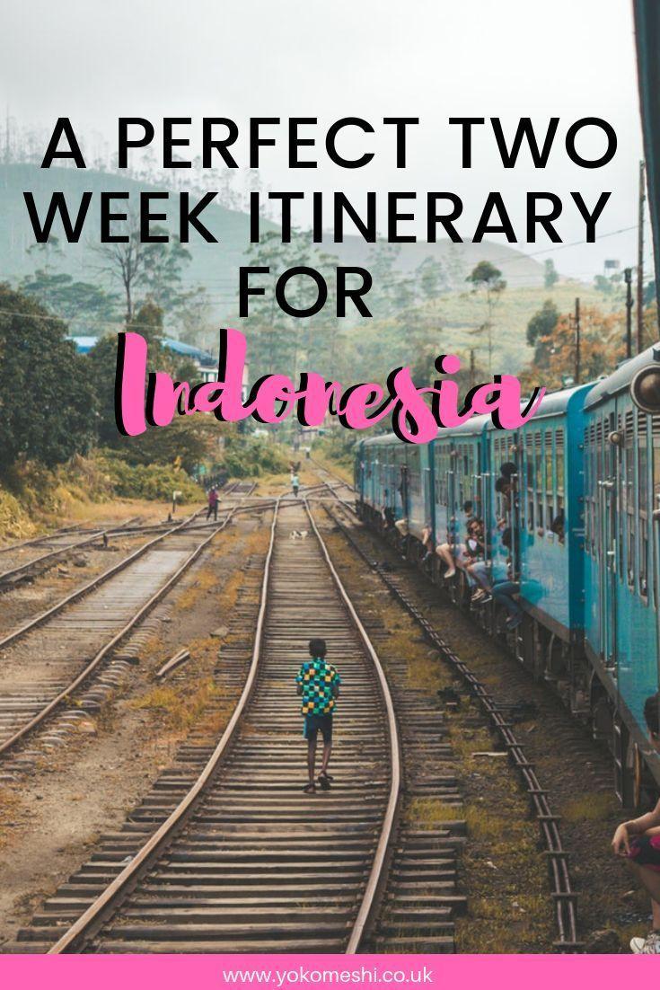 2 Weeks in Indonesia: Islands, Wild Orangutan and Sunrise Hikes