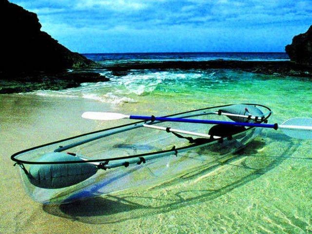 Clear Kayak, Snorkeling & Gumbalimba Park in Mahogany Bay, Isla Roatan