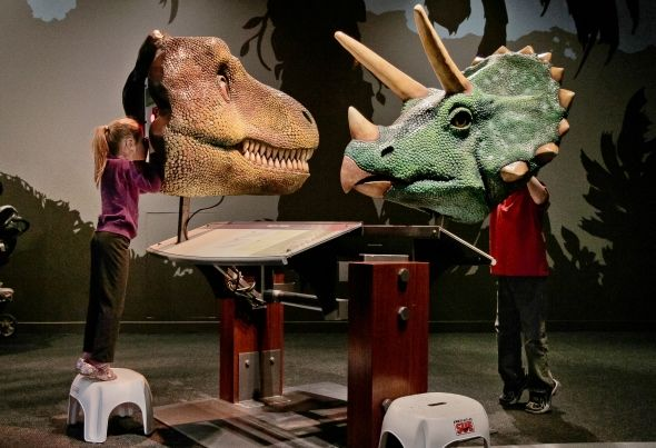 Dinosaur Exhibit at Museum of Nature and Science Colorado leads in dinosaur discoveries