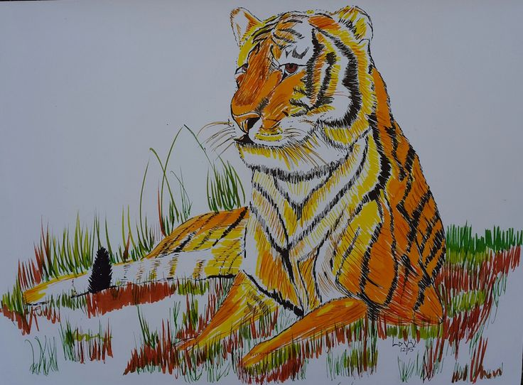 Tiger in brush pen on bleed proof paper. A4