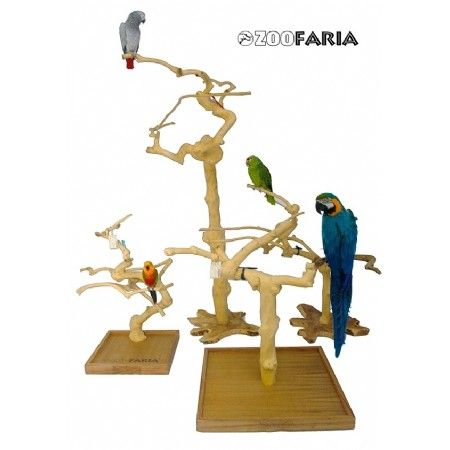 Java Tree Play Stand + Plateau Large afm. plateau : 62 x 62 cm. Geschikt voor alle middelmaat en grote papegaaien. Gemaakt van het zeer harde koffiehout uit Java Indonesie. Voor zeer langdurig gebruik. Bijna niet stuk te krijgen ! Voorzien van een Java kruin bevestigd op een plateau. Afm.: 60/70 cm. breed en 70/80 cm. hoog Afmeting kan lichtelijk afwijken omdat het een natuur-product is.  U dient zelf de tak en het plateau aan elkaar te monteren. Schroeven worden bijgeleverd.