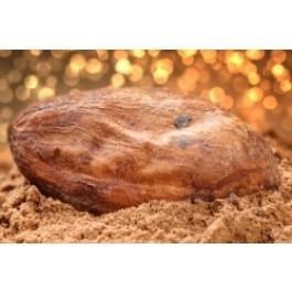 Biologische raw Cacaopoeder (Criollo) uit Peru.