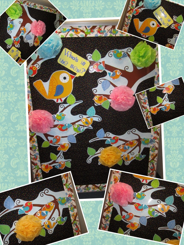 Classroom Ideas With Birds ~ Best images about classroom theme birds  on
