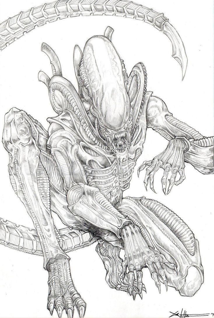 Xenomorph Alien by *ChrisOzFulton | Alien drawings, Alien ...