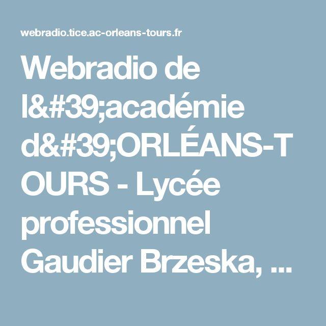 Webradio de l'académie d'ORLÉANS-TOURS - Lycée professionnel Gaudier Brzeska, St Jean-de Braye