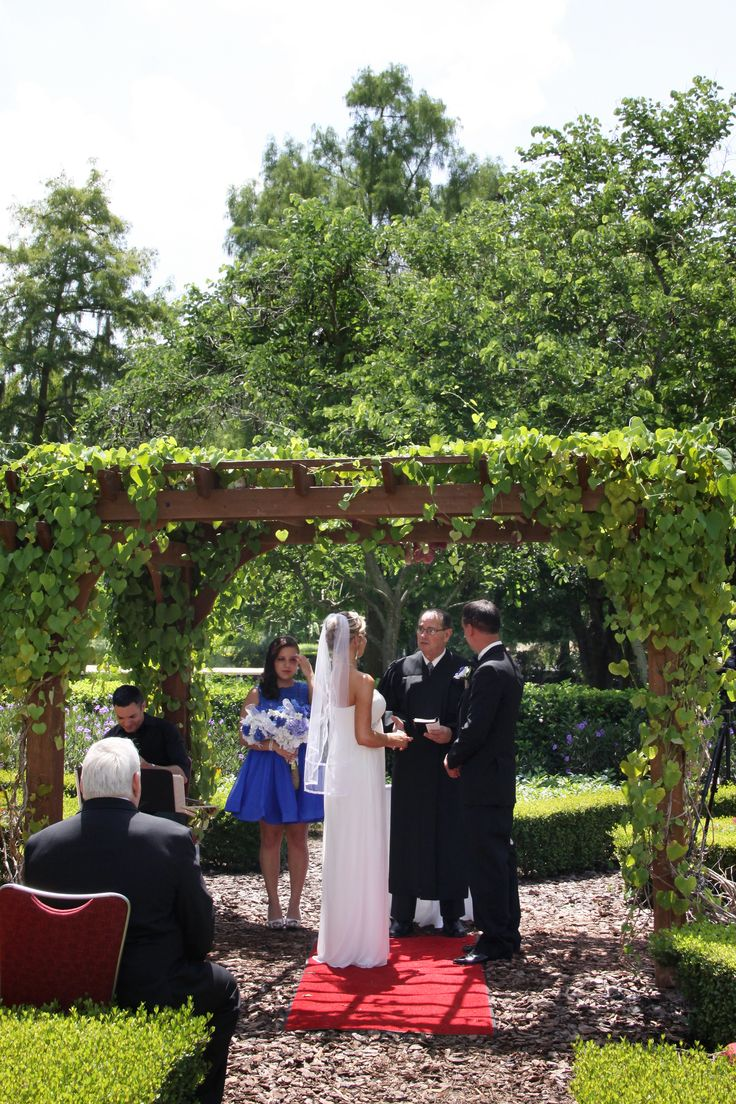 11 best images about hard rock hotel orlando weddings on for Butterfly garden orlando