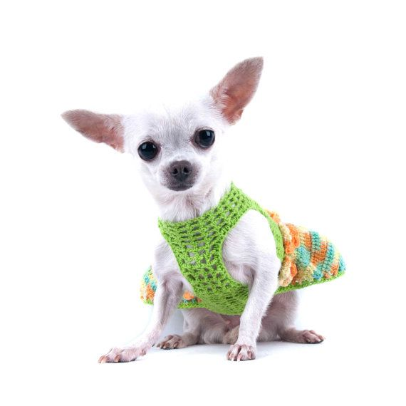Sexy Dog Dress Mint Green Teacup Chihuahua Clothes with