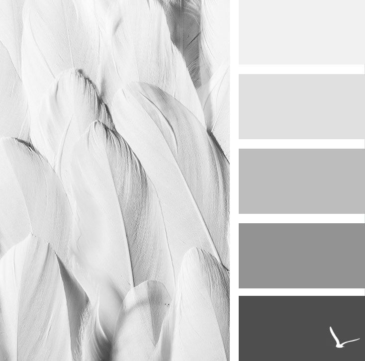 Are you a blogger in love with the minimalist, aesthetic design? If you're looking for white, gray, and black shades, this color palette is perfect for your blog and for your social media branding. Click here to get the hex colors and to see related color schemes.