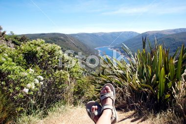 Resting in the Cobb Valley, Kahurangi National Park, New Zealand Royalty Free Stock Photo