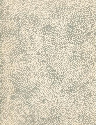 Shagreen Wallpaper from Osborne & Little